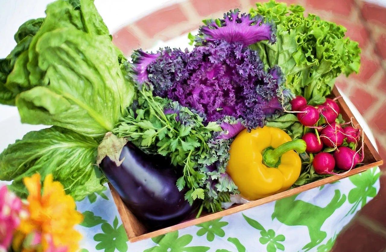 verdure per perdere peso