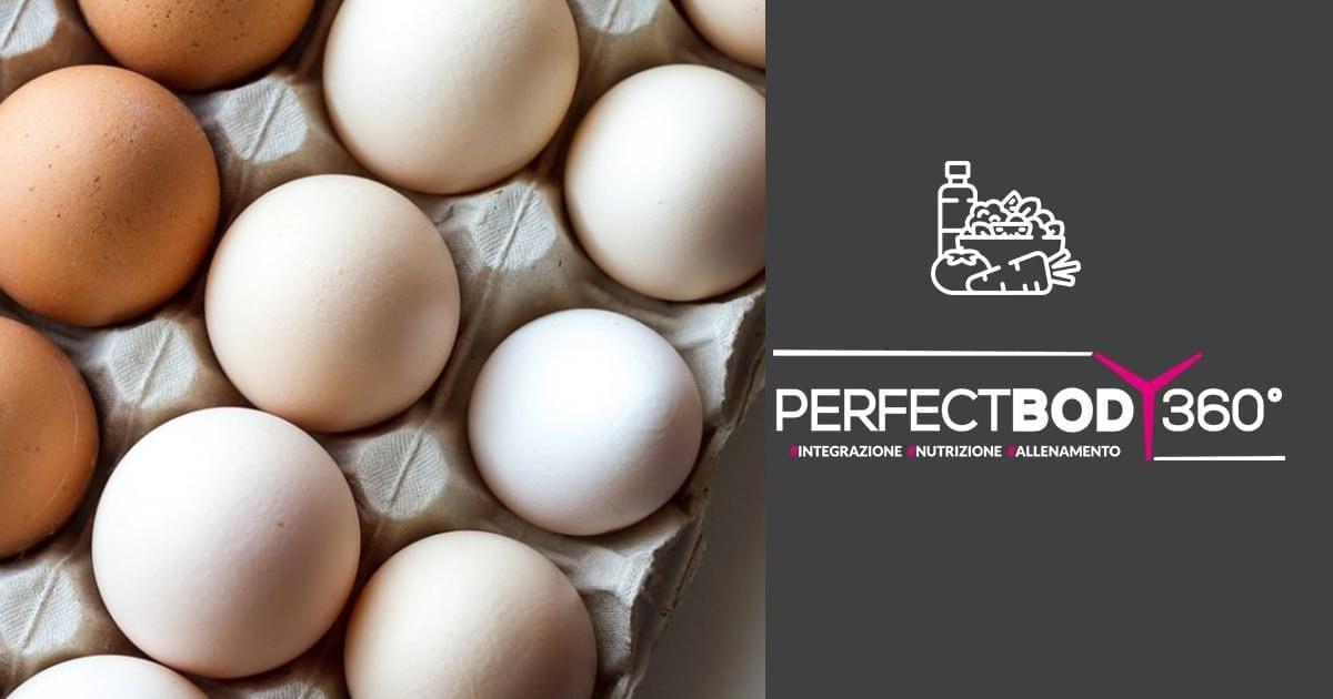 ricette con albumi d'uova